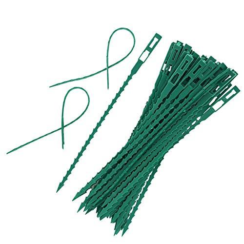 Top 10 StüTze Pflanzen – Kabelbinder